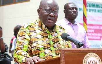 Buy And Eat Made In Ghana Rice -Akufo-Addo Tells Ghanaians